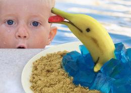 Lakeview-Farms-Banana-Dolphin-Website