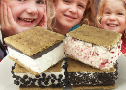 Senor-Rico-Frozen-Smores-Sandwiches-Website