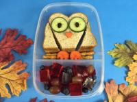 winky-owl-sandwich-gel-bites-lunch-box-website