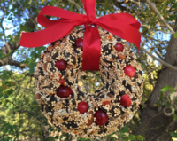 lakeview-farms-bird-seed-wreath-website